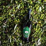 Come si produce l'olio extravergine d'oliva