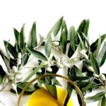 Quanto costa (davvero) l'olio Extravergine d'oliva